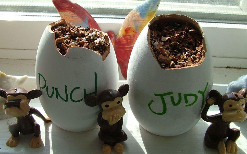 Punch&JudyEggsDay1