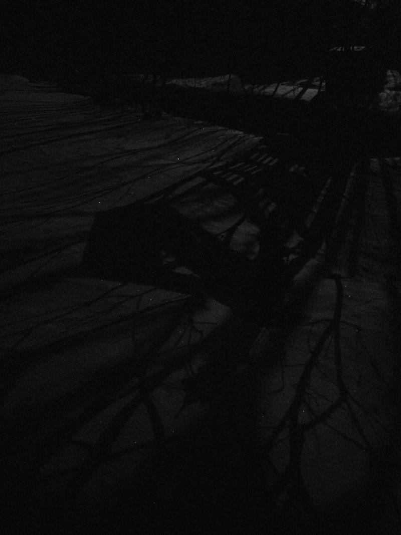 Moonshadow6