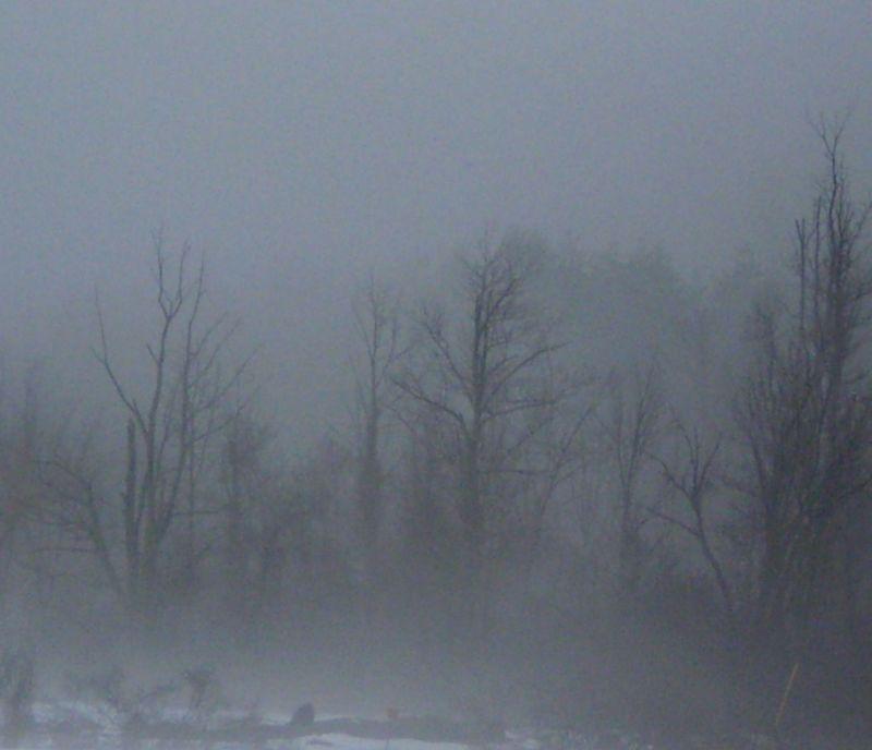 Mist5b