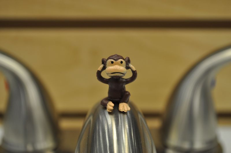 Monkey6c_2_26_11