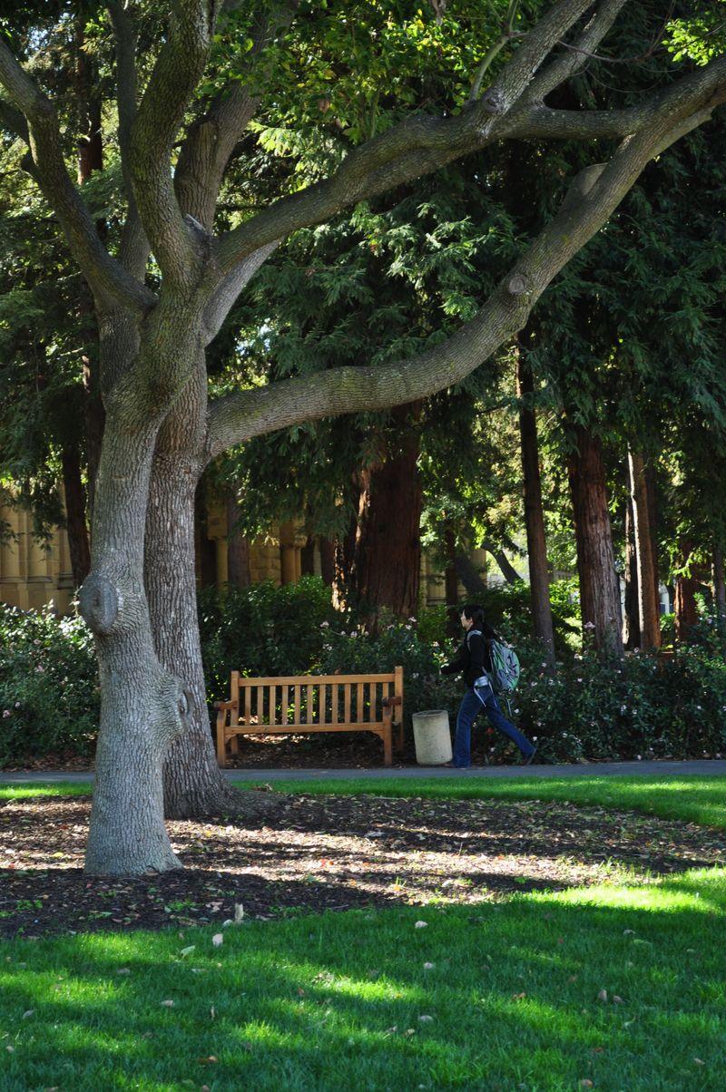 Stanford3