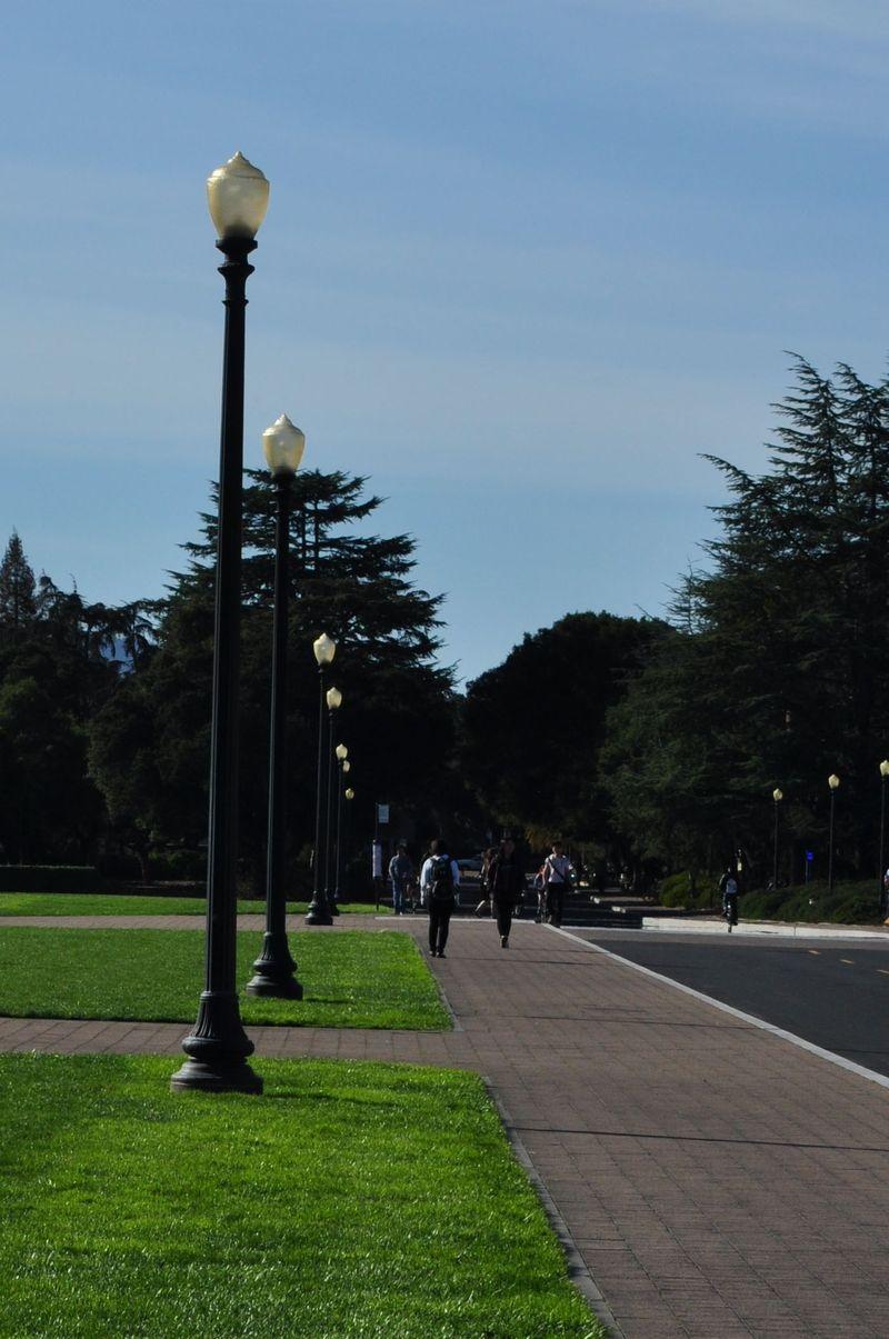 Stanford7