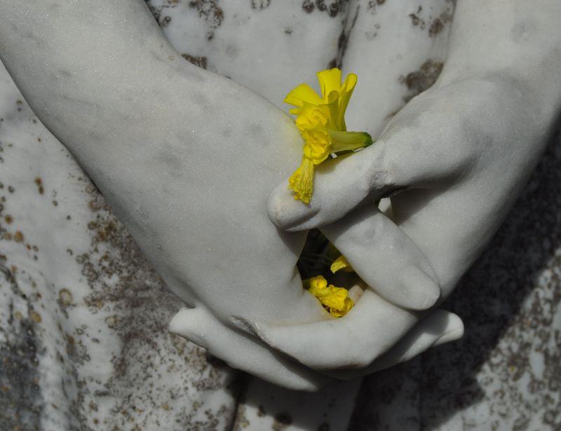 13flowers