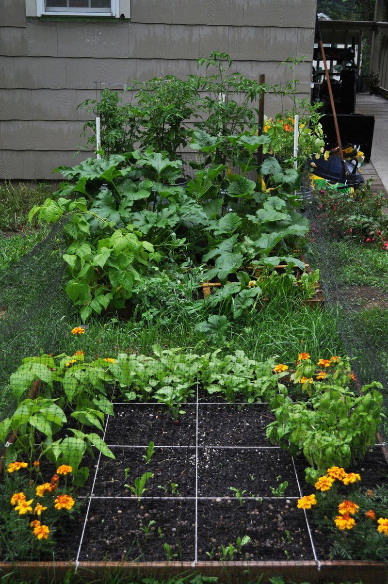 Garden7_23_14