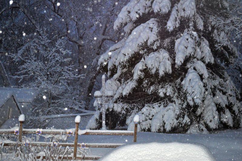 Snow2b