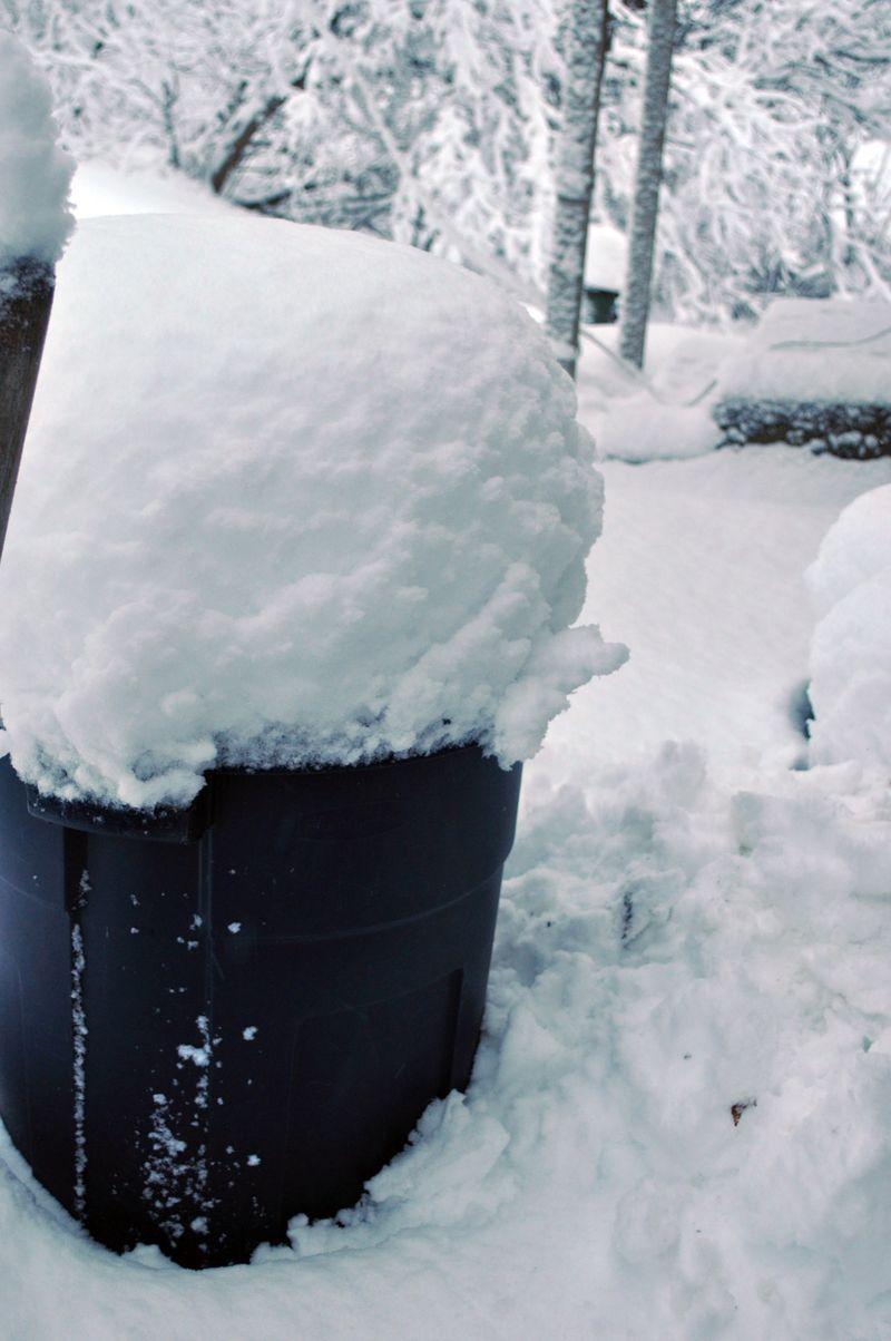Snow11b