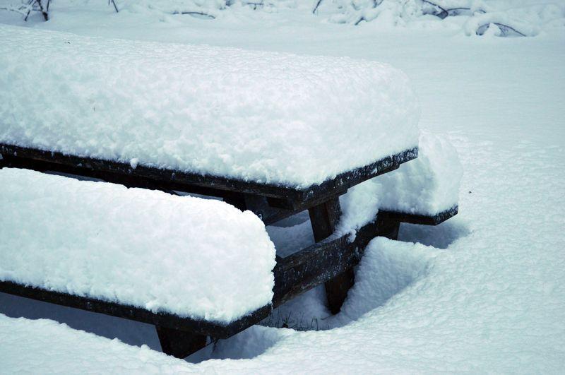 Snow10b