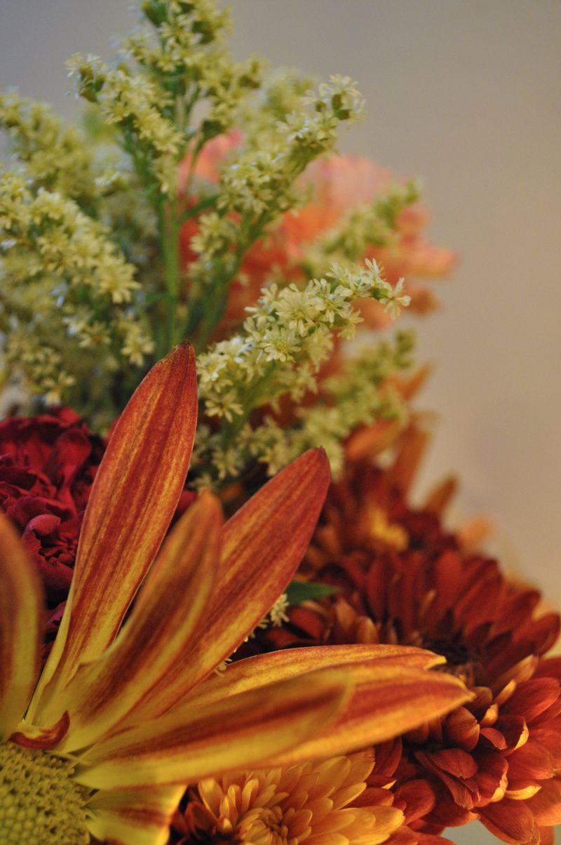 FlowersOct19a_2