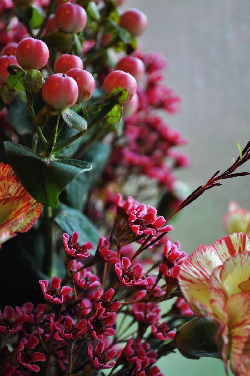 Flowers_0ct25_1