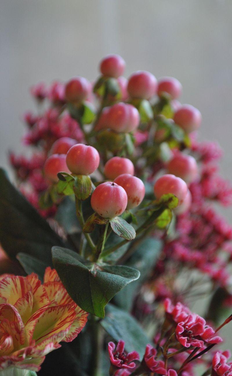 Flowers_0ct25_3