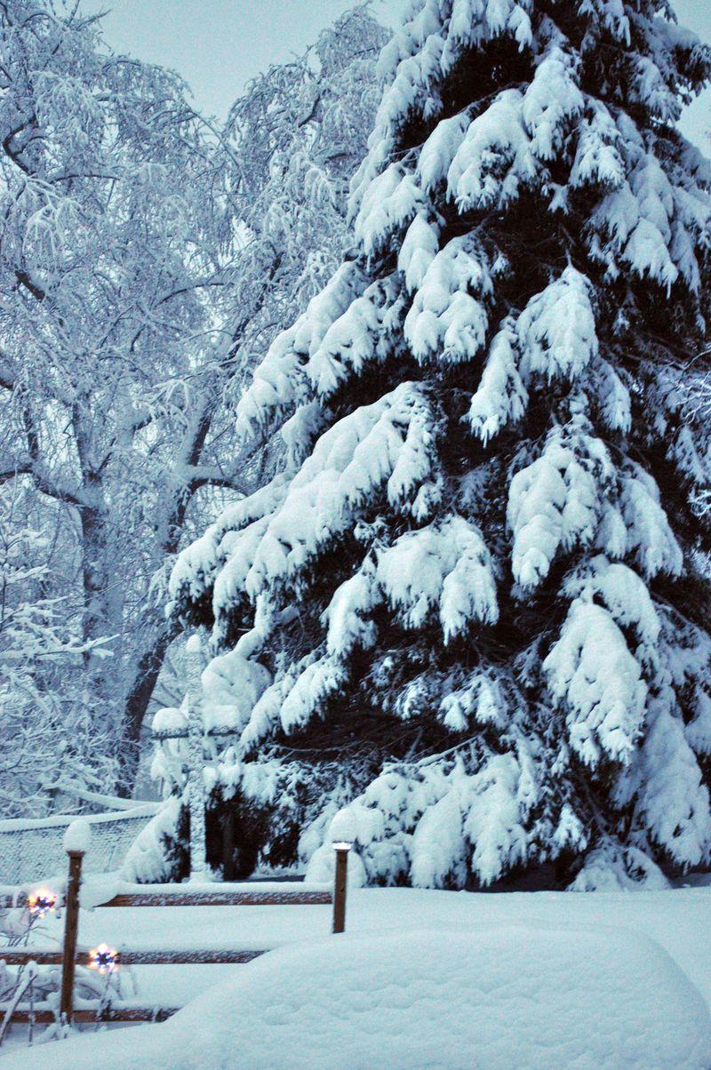 Snow3b